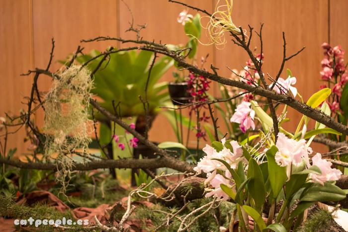 Composición floral en la exposición